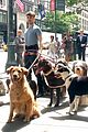 daniel radcliffe dog walker trainwreck nyc set 13
