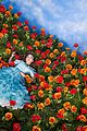 rowan blanchard poppies wizard oz scene 01