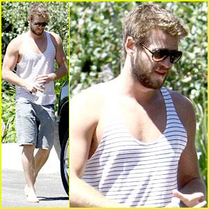 Liam Hemsworth Talks Gale in 'Catching Fire'