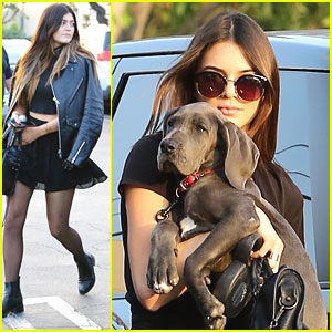 Kendall Jenner Gets New Great Dane Puppy!
