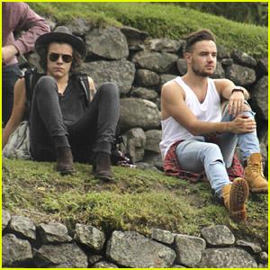 Harry Styles & Liam Payne Visit Machu Picchu