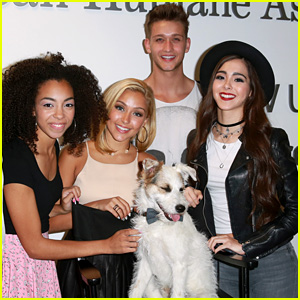 Sweet Suspense Hang Out With Hallmark Channel�s Happy the Dog for a Good Cause!