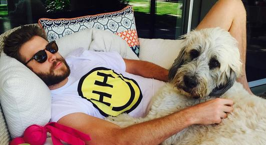 Miley Cyrus Posts Cute Photo of Liam Hemsworth on Instagram! | Liam Hemsworth, Miley Cyrus | Just Jared Jr.
