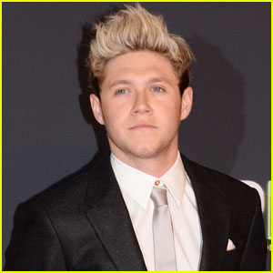 Niall Horan Calls Out Fan for Taking Photo While He Was Sleeping