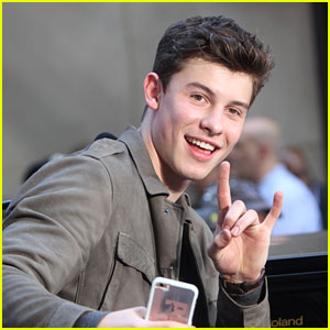 Shawn Mendes Scores Four MTV EMA Nominations - See Full List of Nominees!