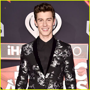 Shawn Mendes Illuminates the Carpet at iHeartRadio Music Awards 2017!