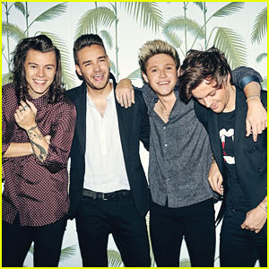 You Can't Make The One Direction Guys Rivals In Their Solo Careers, Niall Horan Says