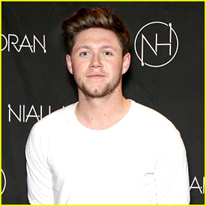 Niall Horan Helps One Direction Tie a Beatles Record