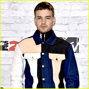 Liam Payne Opens Up About Mental Health Struggles During One Direction Days