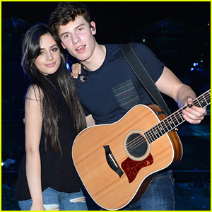Shawn Mendes' Favorite Song on Camila Cabello's Album Isn't What She Thought It Would Be