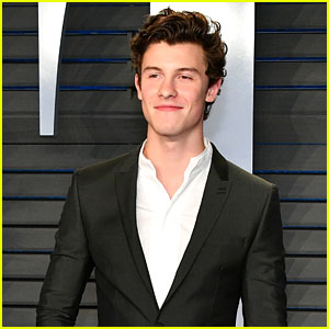 Shawn Mendes Shares Livestream Video That Might End With Third Album Artwork - Watch!
