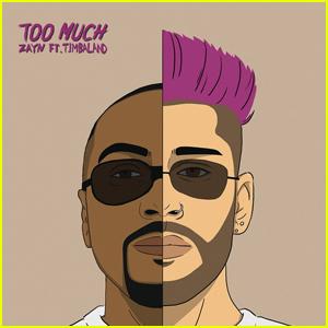 Zayn Malik Drops 'Too Much' feat. Timbaland - Stream, Lyrics & Download!