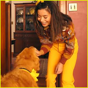 Miranda Cosgrove Bonds With Adorable Golden Retriever in Marshmello's 'Happier' Music Video