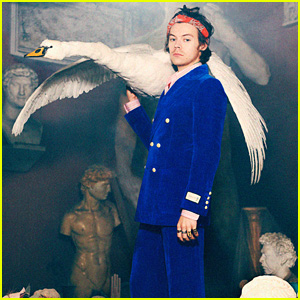 Harry Styles Stars in Gucci's New Fashion Campaign With Swans & Piglets