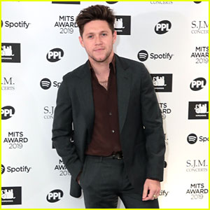 Niall Horan Has Already Written a Song with Future Tourmate Lewis Capaldi!