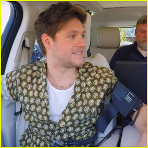 Niall Horan Shares His Thoughts on a One Direction Reunion During Lie Detector Test