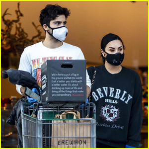 Demi Lovato & Boyfriend Max Ehrich Wear Masks While Grocery Shopping