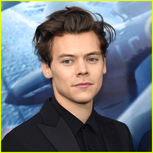 Harry Styles Might Star In a Movie With a Former Disney Princess!