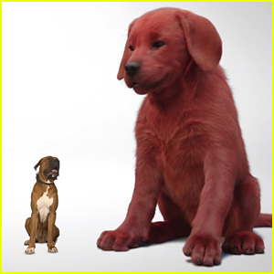 First Look Teaser & Release Date for 'Clifford The Big Red Dog' Revealed - Watch