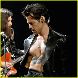 Harry Styles Will Bare It All In Upcoming Movie 'My Policeman'