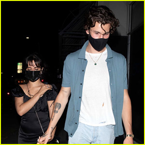 Shawn Mendes Holds Hands with Camila Cabello During Romantic Dinner Date