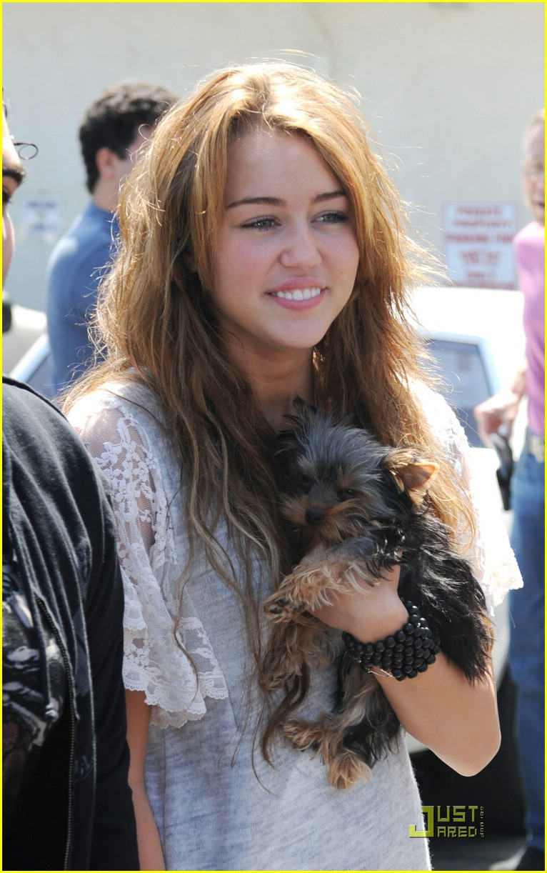 miley cyrus new puppy 14