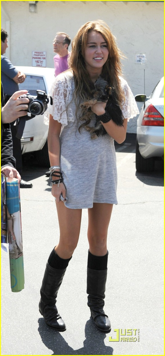 miley cyrus new puppy 19