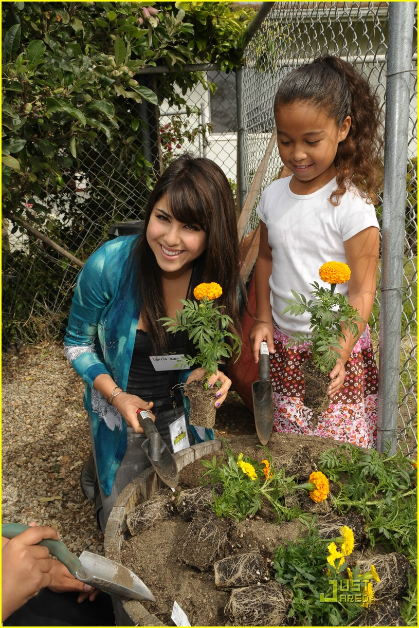 daniella monet create good gardening 13