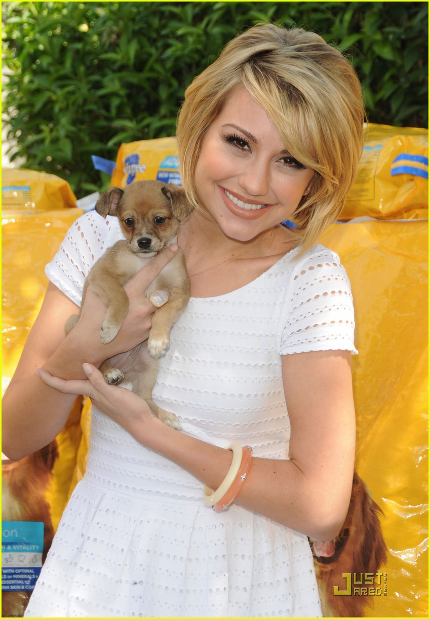 chelsea kane puppy pedigree 03