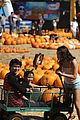 Booboo-pumpkin booboo stewart pumpkin patch 01