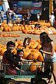 Booboo-pumpkin booboo stewart pumpkin patch 01