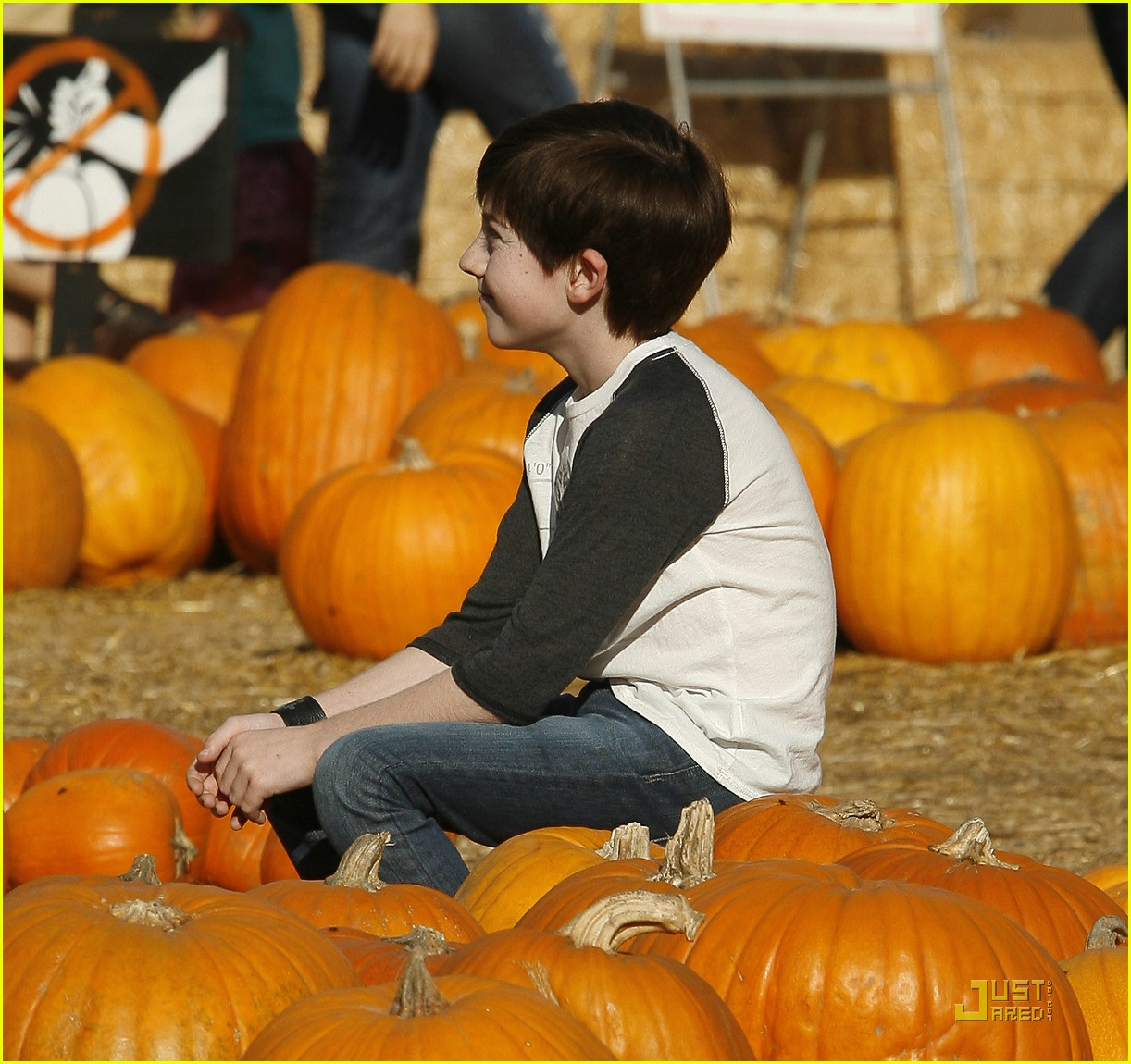 mason cook pumpkin patch 10