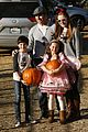 Cook-pumpkin mason cook pumpkin patch 24