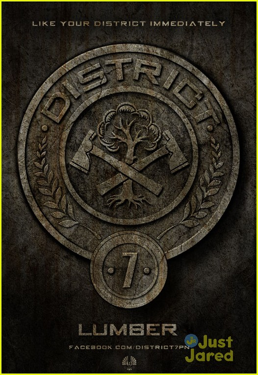hunger games poster districts 02