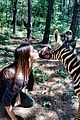Dobrev-zebra-kisses dobrev zebra kisses 02
