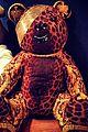 Chloe-pudsey chloe moretz pudsey versace bear 01