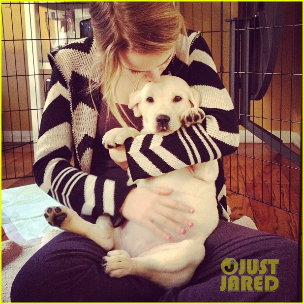 bridgit mendler name new pup