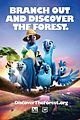 Rio-forest rio 2 discover the forest campaign 02