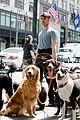 Dan-dog daniel radcliffe dog walker trainwreck nyc set 10