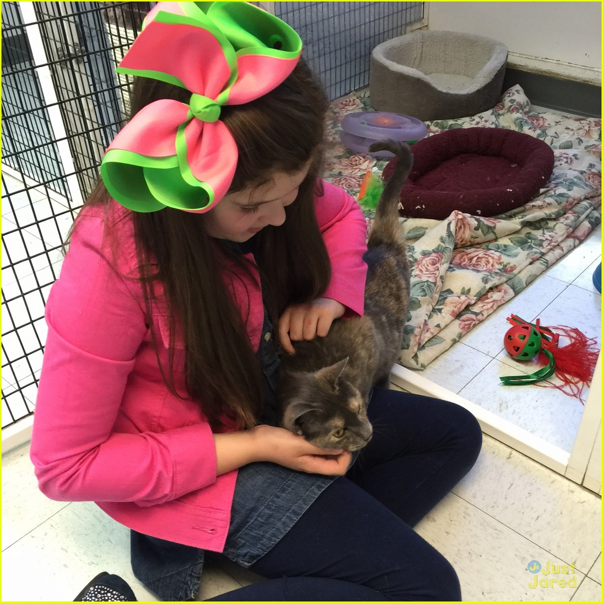 Addison Riecke - Bio, Facts, Family | Famous Birthdays