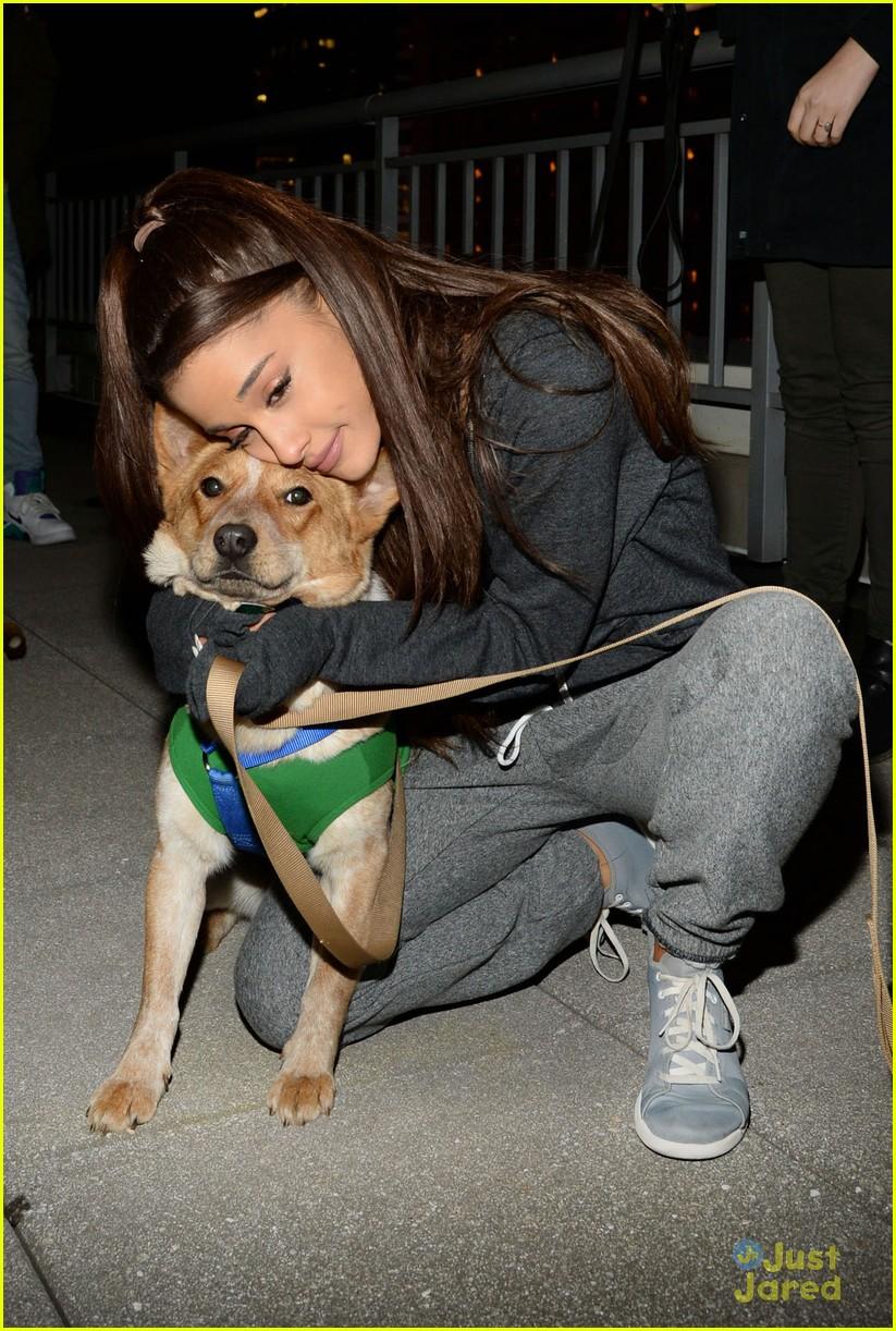 Nyc Dog Adoption Fees